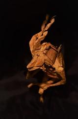 Do Kudoroids Dream of Electric Human? (Nikita Vasiliev) Tags: origami origamiart paper paperart kudu mammal horns animal bladerunner dream shukikato