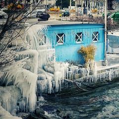 Genève - Les Pâquis sous la glace - vue de puis la jetée des Pâquis (olivierurban) Tags: genève geneva suisse swiss pâquis glace jetée ice fe70200mmf4goss sonyilce7m2