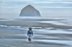 Dreamy Days (ExpressionOfJoy) Tags: sea ocean pacificnorthwest pacificcity oregon haystack rock haystackrock stilllife beach wind windy