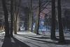 2916 (Keiichi T) Tags: 夜 木 canon tree light eos shadow 日本 snow 影 road 冬 6d 道 japan 雪 night winter 光