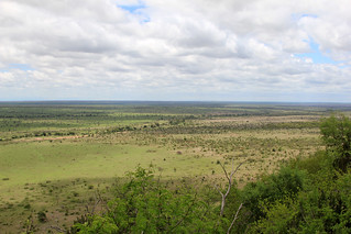 Nkumbe Lookout KNP - South Africa