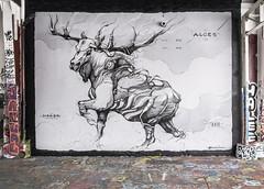 Alces (Vergio Graffito) Tags: alces horor graff graffiti mur wall mural paint painting black moose wild anatomy spray spraypaint art streetart