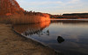 Frensham pond sunset (Steve M Photography) Tags: frenshampond surreyhills farnham surrey nature lake water reeds beach shore waterreflections sunset dusk twilight