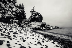 look the other way (Port View) Tags: fujixe3 novascotia canada cans2s 2018 winter littlesplitrock cove coast shore beach rock rocky snow fresh tide tidal fog fundy fundyshore bayoffundy blackandwhite bw monochrome mono
