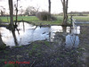 DSC05819 Tanners 40 - 2018 01 17 - Pond on Path which follows LHS of Hedge (John PP) Tags: ldwa tanners tannersmarathon winter 40 miles long distance walkers association january 2018 solo hike johnpp