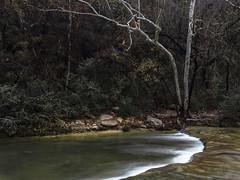 Sliver (keith_shuley) Tags: rapids falls stream creek fall light dark tree bullcreek austin texas texashillcountry