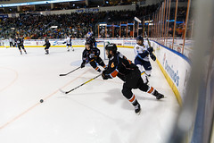 "Kansas City Mavericks vs. Toledo Walleye, January 20, 2018, Silverstein Eye Centers Arena, Independence, Missouri.  Photo: © John Howe / Howe Creative Photography, all rights reserved 2018. • <a style=""font-size:0.8em;"" href=""http://www.flickr.com/photos/134016632@N02/38940754235/"" target=""_blank"">View on Flickr</a>"