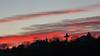 IMG_12874 (maro310) Tags: 2017 365project 70d budapest canon cloudporn gellerthegy hungary magyarorszag city clouds colours outdoor sightseeing sky tel tree urban varosnezes winter twilight alkonyat 250v10f 500v20f