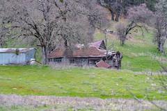 DSCF5365.jpg (RHMImages) Tags: path landscape decay 135mm35mm nevadacounty rust manualfocus fujifilm trees rusted chinon vintagelens fuji road xt2 grassvalley barn fence