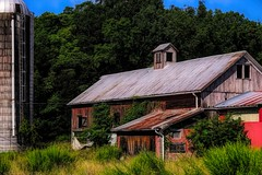 abandoned barn in oil (larrynunziato) Tags: barn mixedmedia digitalpainting coarists digitalmixedmedia summer abandonedbarn awardtree shockofthenew