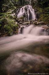 Cascade de la goutte des saule (Manonlemagnion) Tags: cascade eau nature sousbois forêt hiver neige froid nikond7000 1685mm nd400
