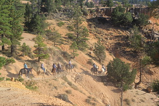 Riding the Trail, Bryce Canyon, Utah, USA.