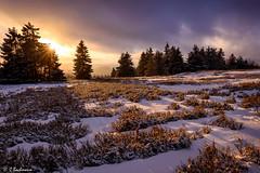 Kahler Asten at sunset (Germany) (bachmann_chr) Tags: sauerland kahler asten hochsauerlandkreis hsk sonnenuntergang romantik mountain winterberg abendstimmung sunset nikon nikkor d750 vollformat full frame blaue stunde blue hour schnee snow heide