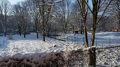 La neige à Paris XVIIIème (Chaufglass) Tags: