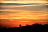 dolci colline sabine (luporosso) Tags: natura nature naturaleza naturalmente nikon nikond500 nikonclubit nikonitalia tramonto trees sunset nuvole clouds silhouette siluetas italia italy lazio sabina