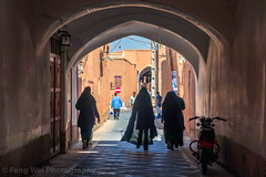 Old Town of Yazd, Iran (Feng Wei Photography) Tags: islamicculture persianculture middleeast lane yazd street landmark colorimage oldtown horizontal islamic arch alley famousplace builtstructure iran iranianculture travel mud islam traveldestinations outdoors unescoworldheritagesite wall tourism unesco persian irn chador
