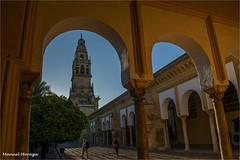 Campanario (Manuel Moraga) Tags: manuelmoraga campanario mezquitadecórdoba catedral arquitectura patio arcos córdoba andalucia españa explore