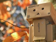DSCN1232 (SethDanbo) Tags: danbo danboard cardboard cardbox danbox japan toy actionfigure water orange autumn fall