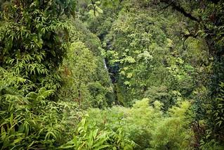 The Hidden Waterfall, Akaka Falls, Hawaii