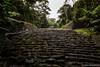 Pausas (Melophoto) Tags: costarica melophoto melvinramírez aborigen antepasados fotografía guayabo herencia historia legado monumento