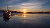 Stockholm Ferry (Jens Haggren) Tags: ferry sun sunset water ice sky clouds reflections light riddarfjärden stockholm sweden olympus em1 jenshaggren