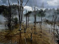 Mud pot geothermal (Cris_Pliego) Tags: matamata hobbiton thelordoftherings newzealand volcanic magic bridge smoke rotorua geyser geothermal travel backpacking roadtrip maori shadows pot kuirau park