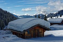 Chalet savoyard (David Bertholle) Tags: chalet savoyard alpes mountains montagnes landscape paysages nikon d7200