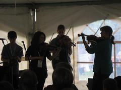 step-fiddlers-in-silhouette-nl-folk-festival-2009_3801360515_o