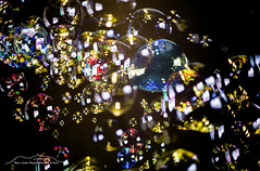 Seifenblasenkomposition 180303 (Bianchista) Tags: bianchista composition komposition märz seifenblasen soapbubbles winter