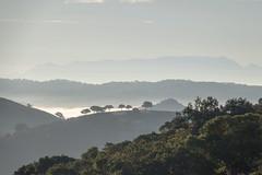 Sierra de Andujar - Andalusia - Spain (wietsej) Tags: sierra de andujar andalusia spain rx10 rx10m4 iv sony landscape mist fog rx10iv
