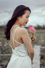 Anna (Hai PT) Tags: vietnam ninhthuan lotus village flowers sky fresh beautiful beauty girl young sonyalpha fe55 white pink