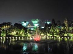 sin17-gardens-by-the-bay-2017-11-10-STF-L09-38-72dpi-2 (datenhamster.org) Tags: singapore singapur 2017 holiday travel gardens bay night