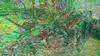 Landwirtschaftliche Geraete 33 (wos---art) Tags: bildschichten landwirtschaft geräte geschichte handwerk pflug egge