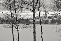 Hudiksvall (Stefano Rugolo) Tags: stefanorugolo pentax k5 pentaxk5 smcpentaxm100mmf28 monochrome hudiksvall landscape framing trees winter snow church branches lake ice sverige sweden hälsingland pentaxprimes vintagelens water tree park sky