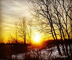 Good morning world! May your walk today be covered in sunshine!!🌞 (Edale614) Tags: sunset sunshine sunrise fromtheroad snowy snow nature naturelovers ohio trees peaceful earl614
