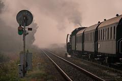 Ready to go (ahimsia) Tags: wolsztyn nowa sól parowozownia parowóz parowozy steam engine locomotive train railway railroad kolej tpwp