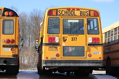 First Student #377 (ThoseGuys119) Tags: firststudentinc schoolbus pinebushny thomasbuilt dslr canon eos77d winter sunlight beautiful snow