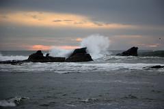 Rocks against the Ocean (JB by the Sea) Tags: halfmoonbay sanmateocounty coastside california december2017 princetonbythesea pillarpointharbor princeton pacificocean pacific ocean