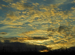 2017.12.26.079 SHAFFHAUSEN (alainmichot93 (Bonjour à tous - Hello everyone)) Tags: 2017 suisse schweiz svizzera europe cantondeschaffhouse schaffhousen ciel nuages coucherdesoleil sunset sky cielo himmel hemel céu clouds nubes nuvens wolken nuvole