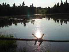 Glow ... (Mr. Happy Face - Peace :)) Tags: behindfence hff sky sun pond trees mirrored reflections glowning yyc scenery nature brokhen broken flare art2018 archives albertabound