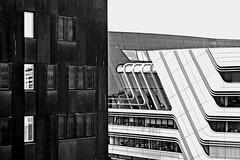 a shared perspective (christikren) Tags: wuinvienna wien austria universität blackwhite building schwarzweiss january 2018 contrast architecture kontrast