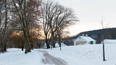 Valley Forge in Snow (Garen M.) Tags: wayforward nikond850 snow cold winter valleyforge nikkor2470mmf28