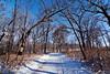 016/365 (local paparazzi (isthmusportrait.com)) Tags: 365project canon5dmarkii tokina1628f28 zoom lopaps pod 2018 iso200 redskyrocketman localpaparazzi isthmusportrait madisonwi danecountywisconsin isthmus cherokeemarsh trail landscape winter winterlandscape tokina 1628 f28 sharpess trails details clarity raw cr2 canonraw