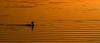 Dawn lines (OzzRod) Tags: pentax k1 hdpentaxdfa150450mmf4556 dawn water ripples orange gold bird cormorant cuttagee pentaxart
