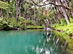 Laguna del Toro, Argentina 🇦🇷 San Martín de los Andes. (dani_chimi) Tags: argentine argentina sanmartíndelosandes patagonia lagos