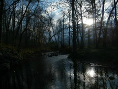 Good Lord Willin' And The Creeks Don't Rise... (EXPLORED)  Front Page # 30.. (~ Cindy~) Tags: creek townsend tennessee november2017 flickrissoslow reflections evening sunset explored frontpage 30