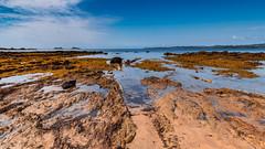 A day by the Bay - Seascape (Merrillie) Tags: australia beach landscape waterscape water batemansbay longbeach rocks outdoors seascape southcoast australiaday newsouthwales sea