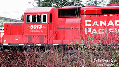 JR55D72_1720 (john_robson) Tags: canadianpacific bccanada happyengineereh mapleridge photoop 9mr623