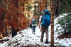 Sequoia and Kings Canyon National Park (thejoltjoker) Tags: hiking backpacking nature sequoia kingscanyon forest