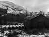 Kayaks - Loch Eck Jan 2018 (GOR44Photographic@Gmail.com) Tags: kayak scotland monoscotland bw gor44 loch eck argyll water winter snow trees cowal panasonic gx8 olympus 1240mmf28 black white hills